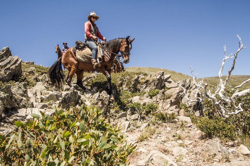 Victoria horse riding