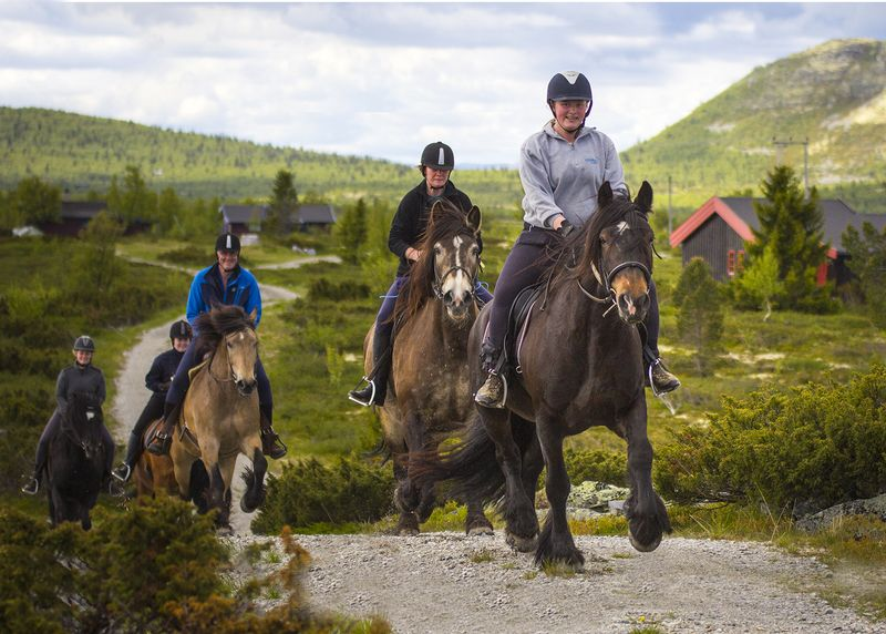 intermediate-horse-riding-holidays