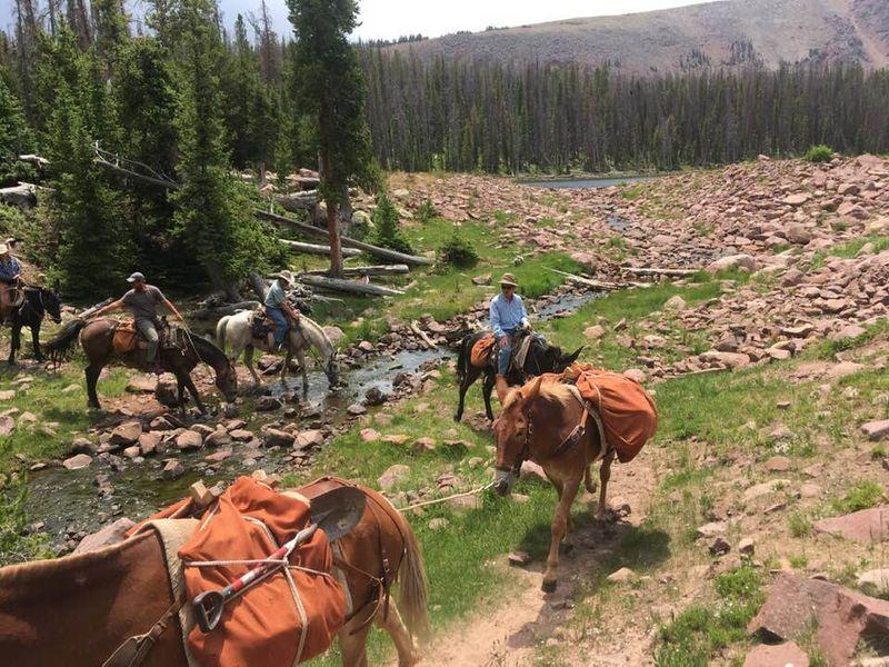 Utah pack trip