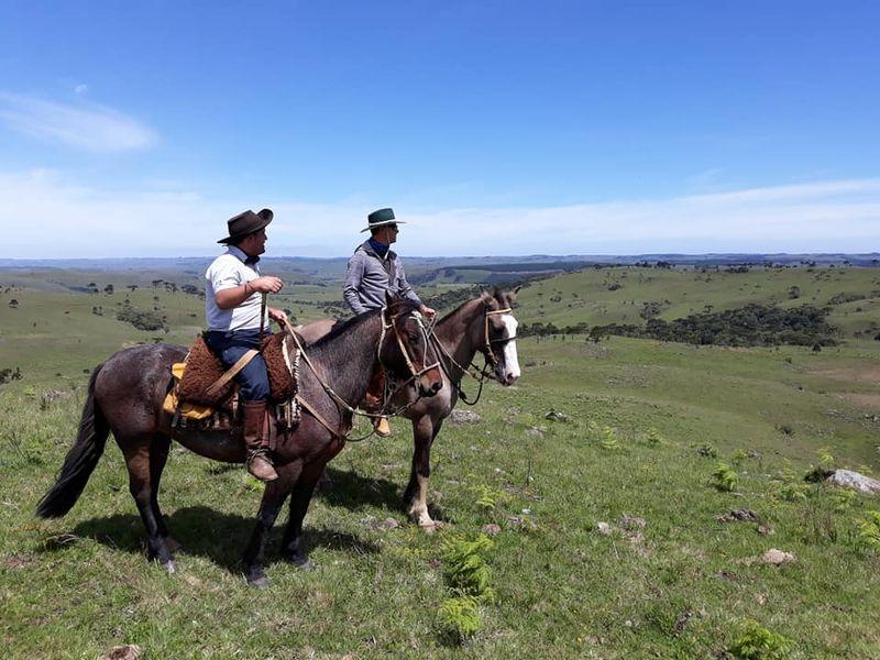 horse riding Brazil