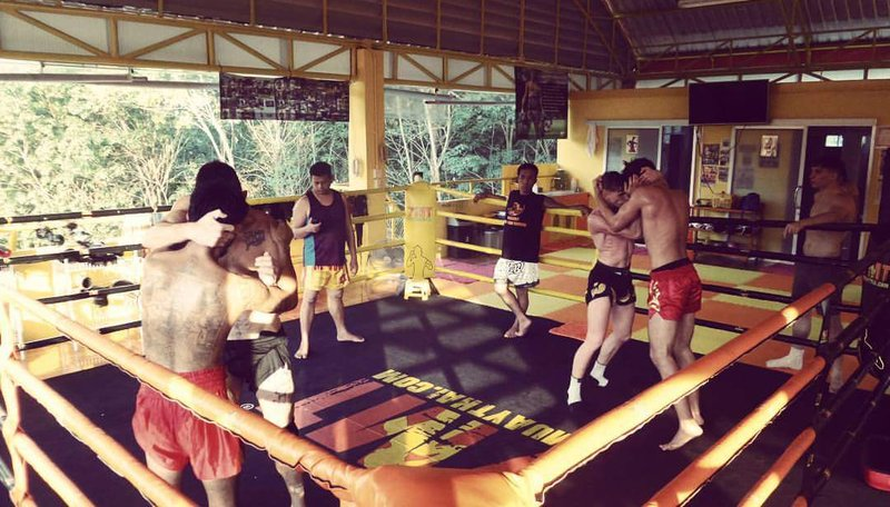 Muay Thai training in session