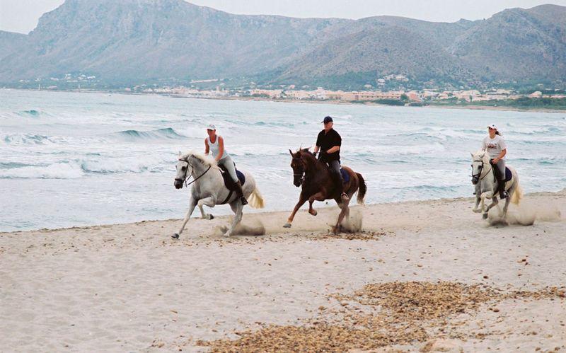 Mallorca beach horse riding