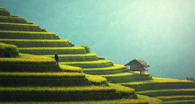 travel-vietnam