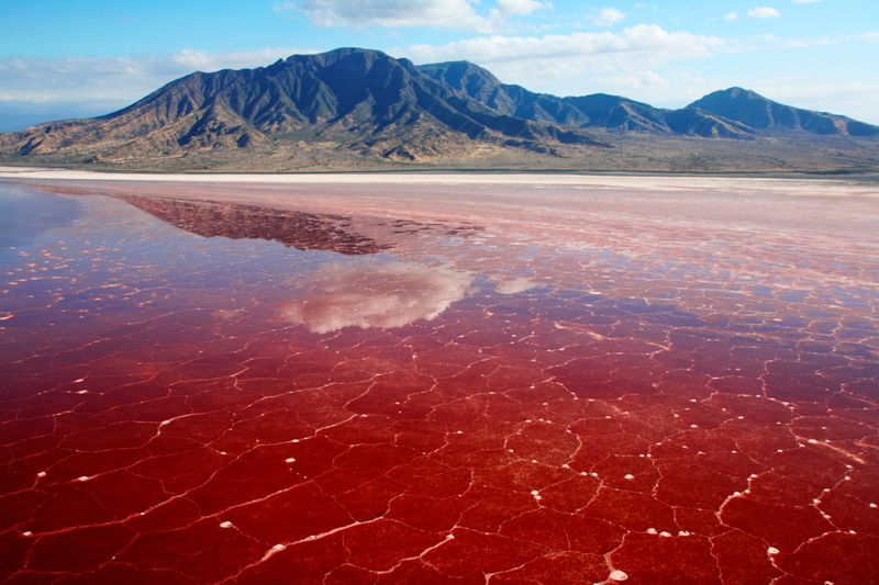 Lake Natron Tanzania Travel