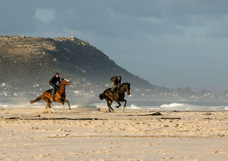 two men riding horses on the beach