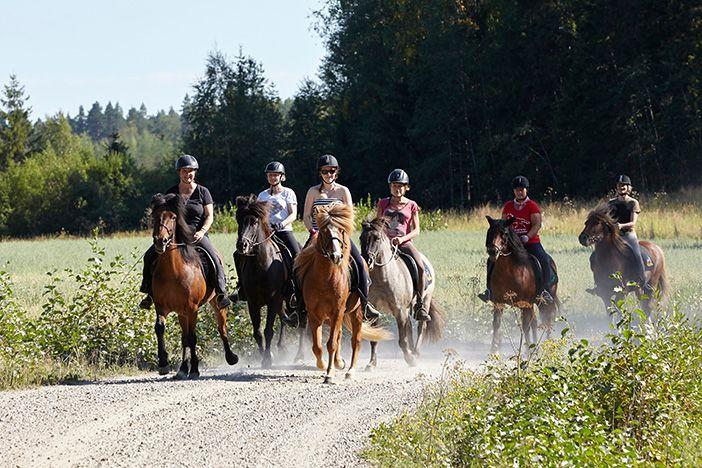 horse riding Finland