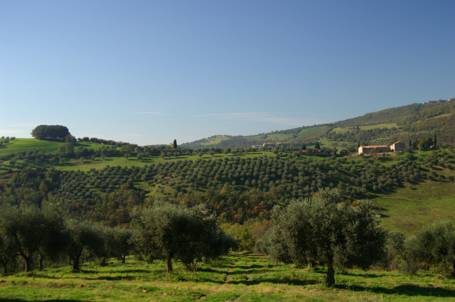 Landscape from Umbria, Italy