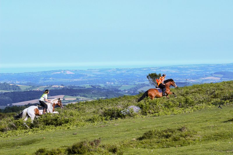 Horse Riding in Devon