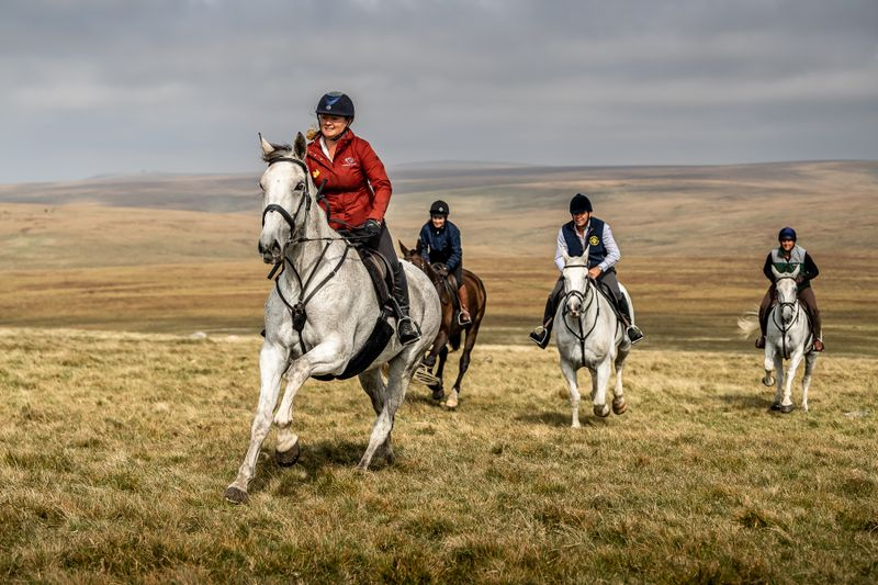 clean-safe-horse-riding-holidays