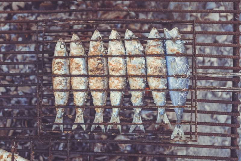 grilled-sardines-arrifana-portugal