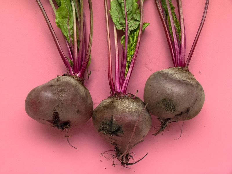 Beetroot helps regenerate the cells in the liver