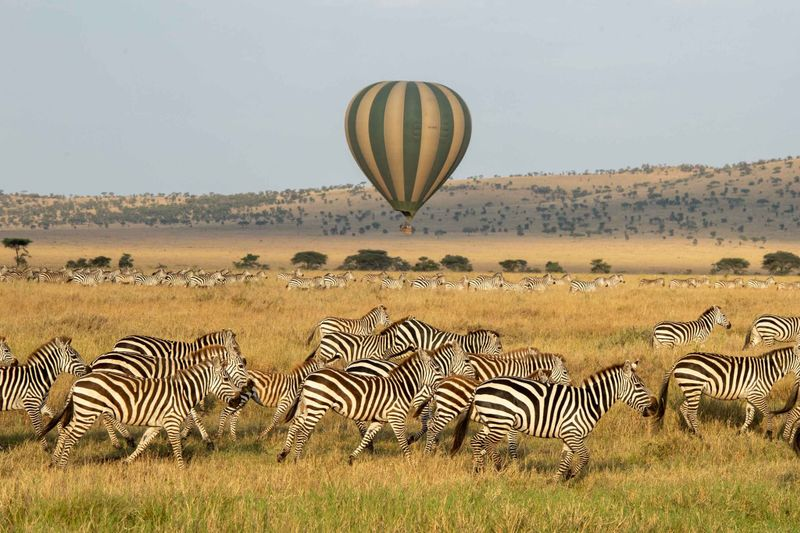 balloon ride over serengeti, tanzania