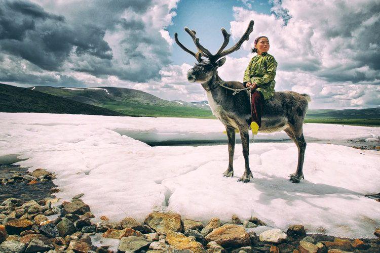 reindeer-people-mongolia