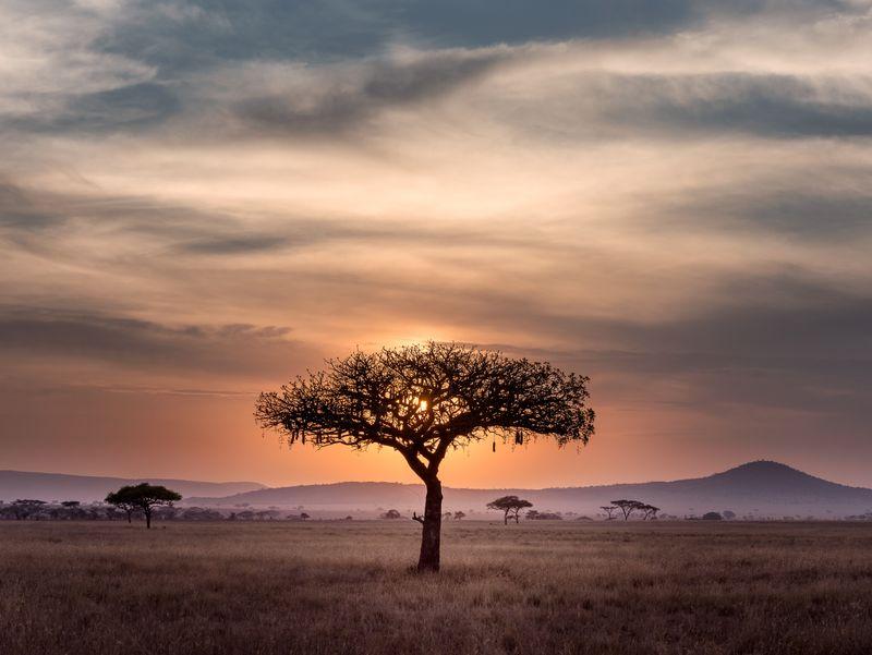 sunset-serengeti-tanzania