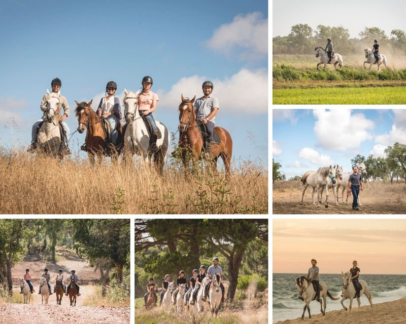 luxury-horse-riding-holiday-melides-portugal