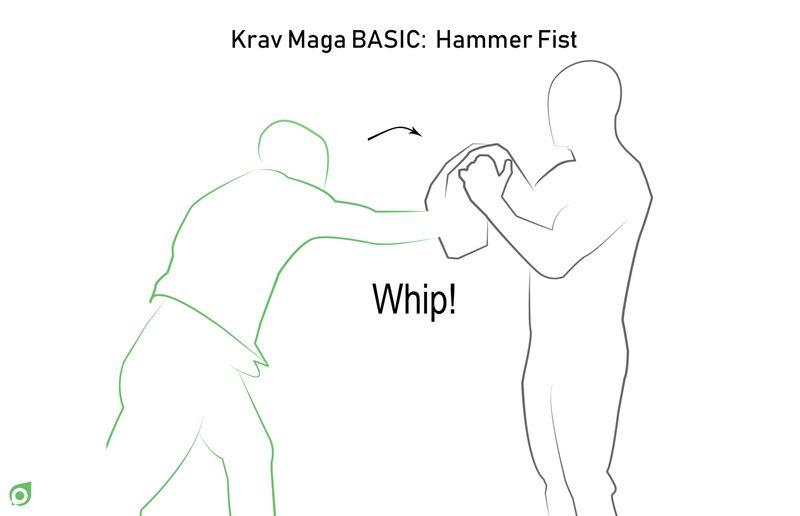 hammer fist step 3 book martial arts tripaneer