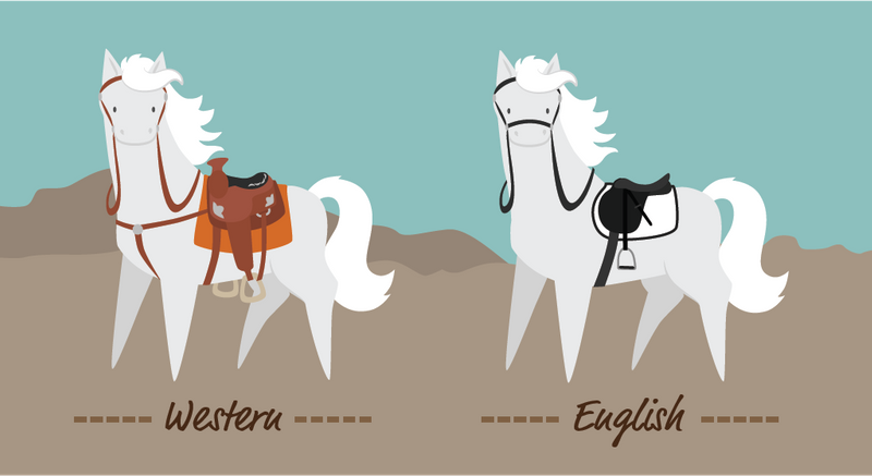 English vs Western Riding: What's the Difference