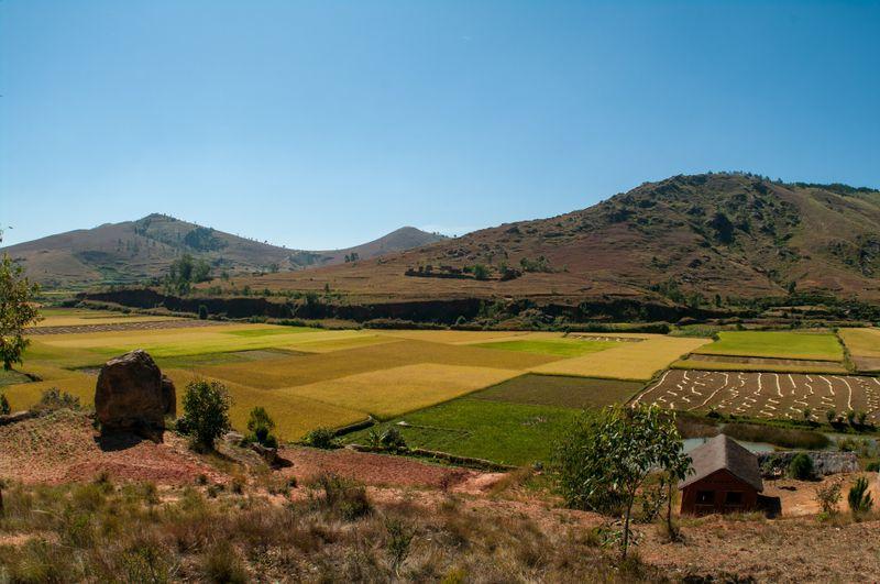Madagascar's countryside