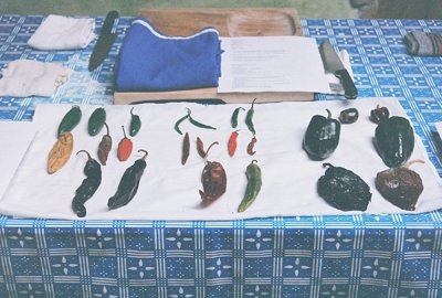 mexican home cooking holiday in tlaxcala - chiles