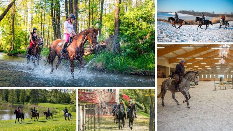 horse riding holiday in poland