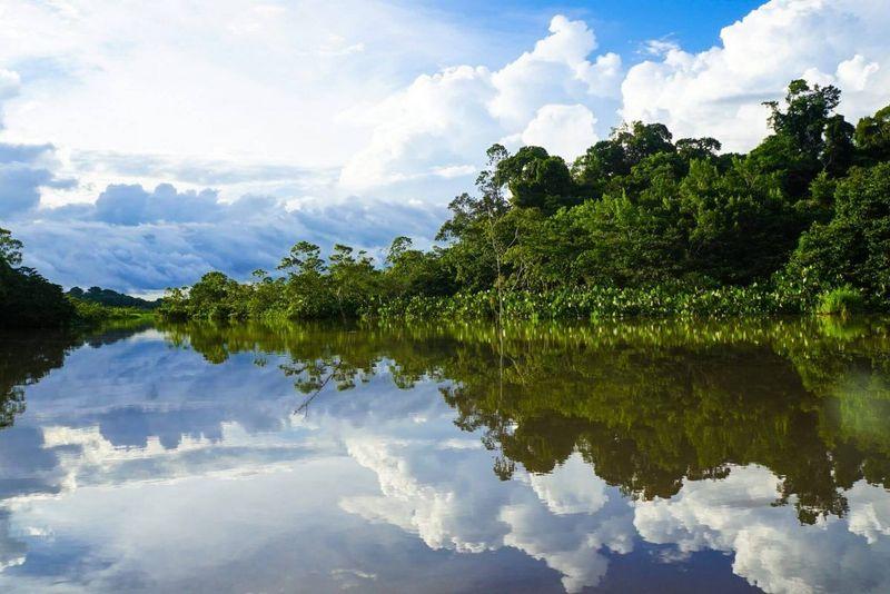 the amazon in ecuador