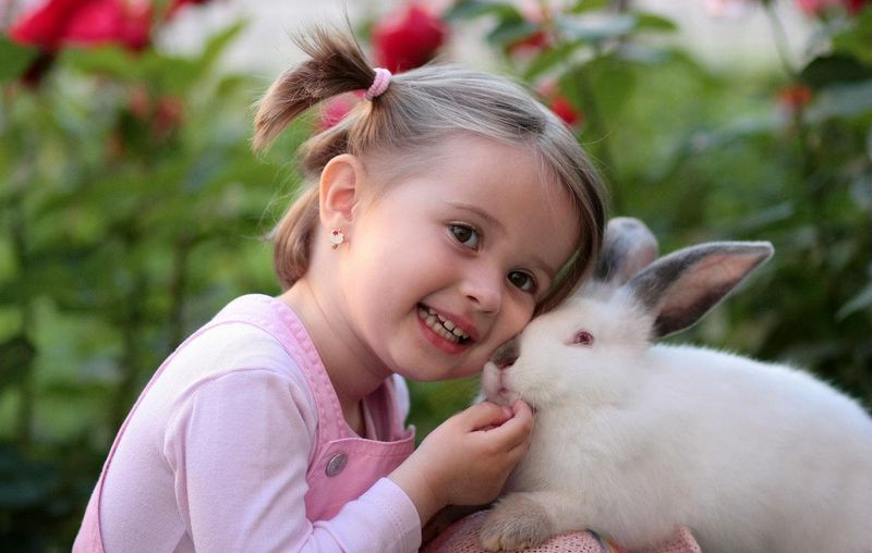 little girl with pigtails and bunny