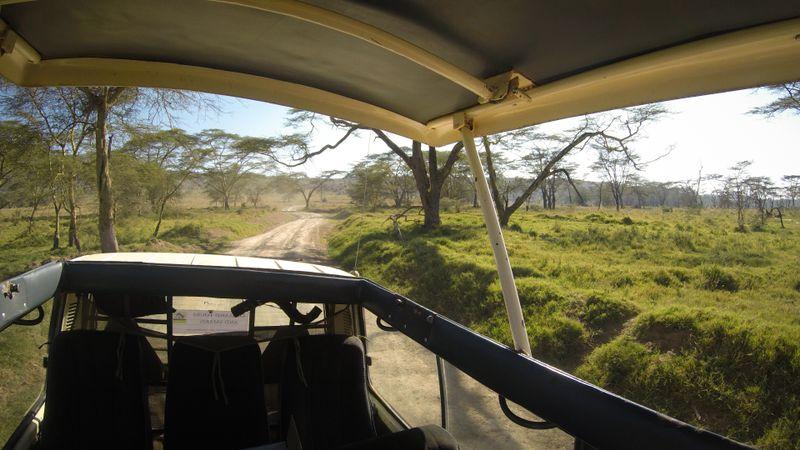 safari-lake-nakuru-kenya