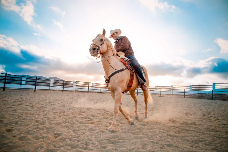train-horse-riding