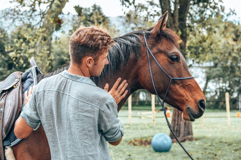 groom-horse