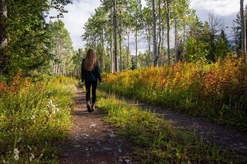 walking meditation in the woods