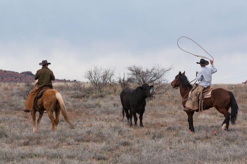 ranch-vacations