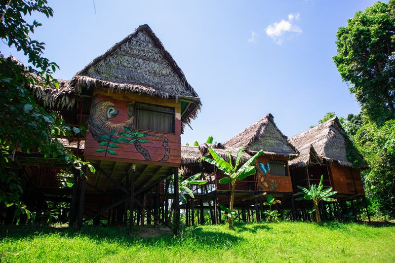 lodge in the amazon