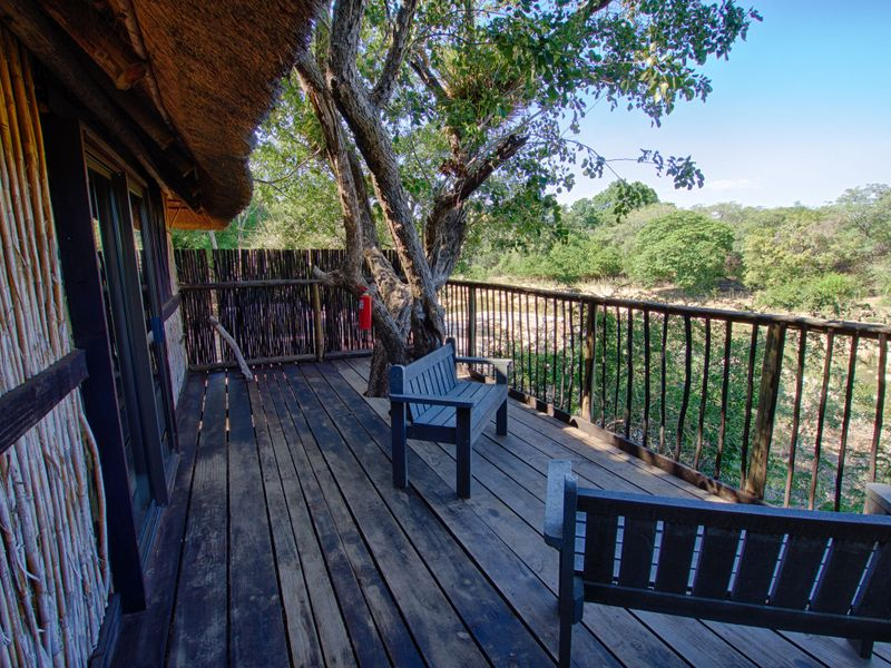 treehouse in south africa