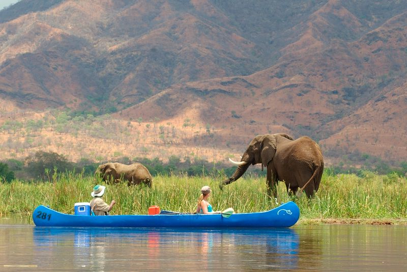 canoe safari in zambia