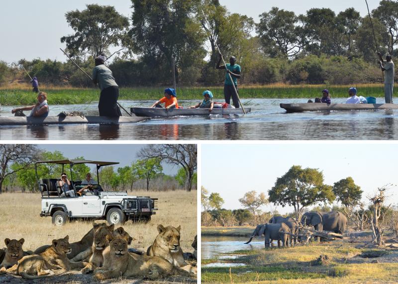 safaris in botswana