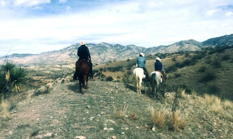 sonora horse riding holiday