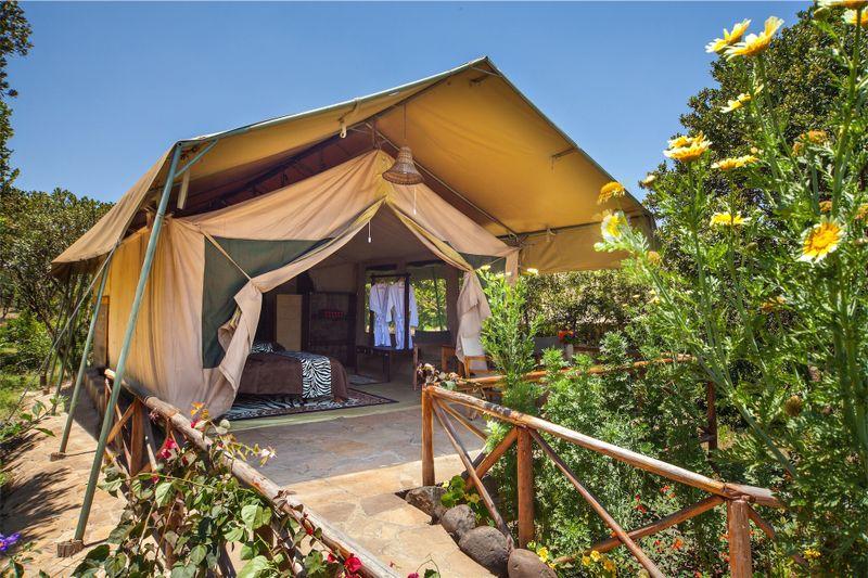 tent in masai mara