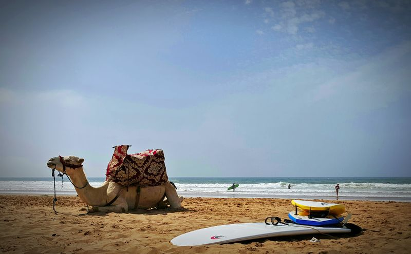 surf-banana-beach-tamraght-morocco