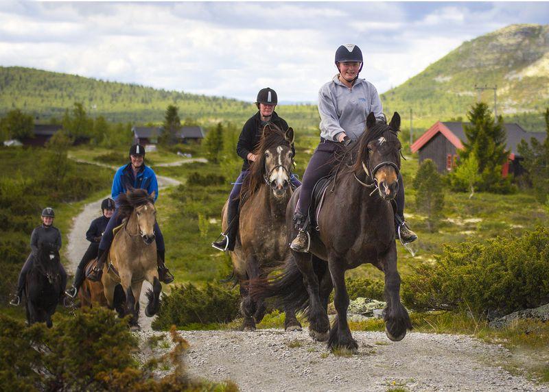 trail-riding-holidays