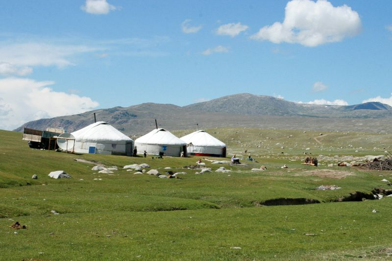 Mongolian traditional gers