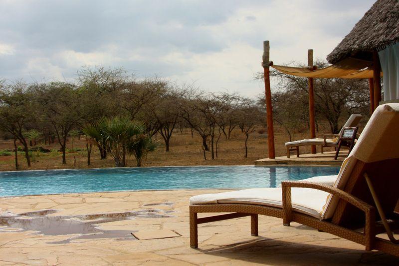 accommodation on a safari