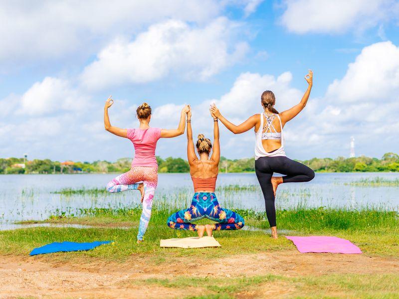hatha-yoga-elements