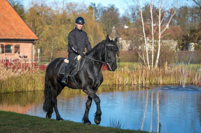 intermediate-horse-rider