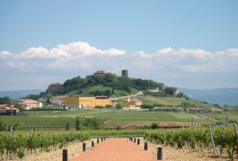 basque country wineries
