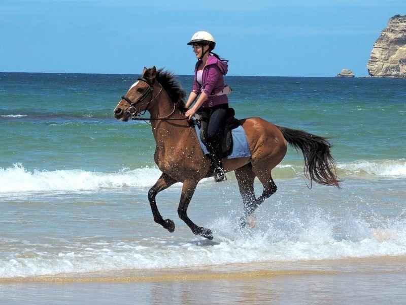 beach horse riding Spain