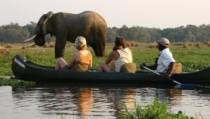 canoe safari in zimbabwe