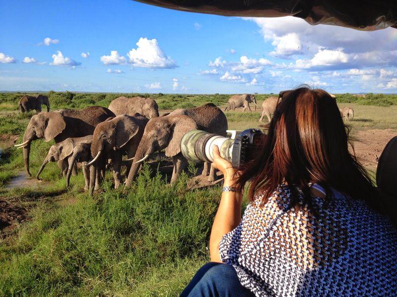 photography safari in the serengeti