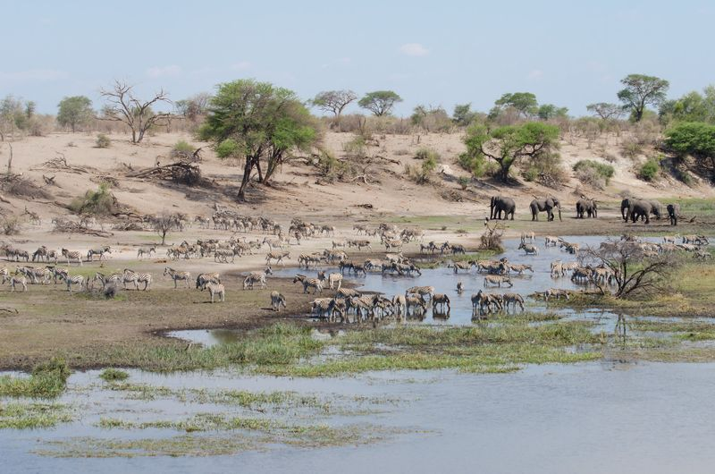 Makgadikgadi Pans Botswana