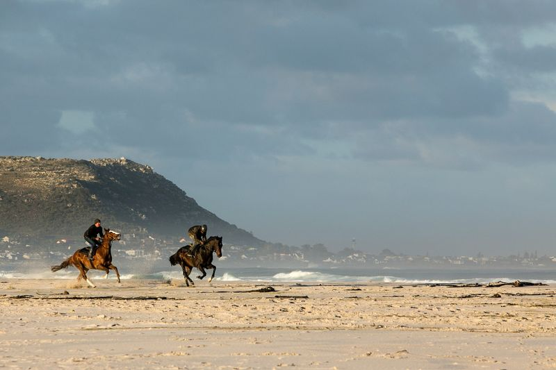 Devon beach horse riding