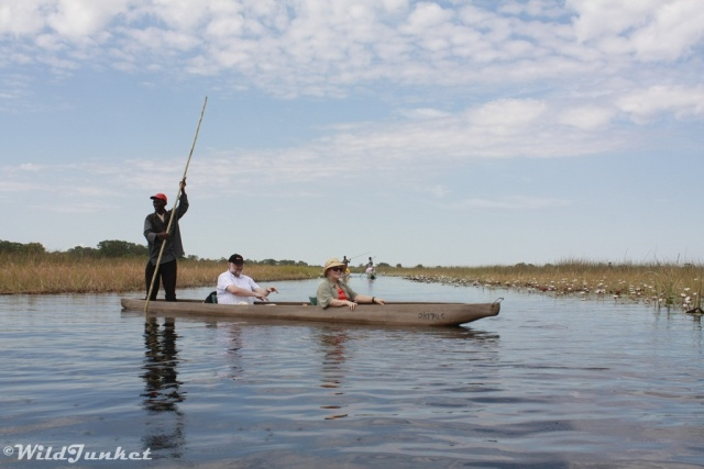 african countries for safaris: botswana